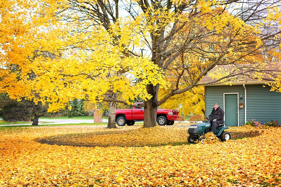 fall prep for your garden lawn and home long island